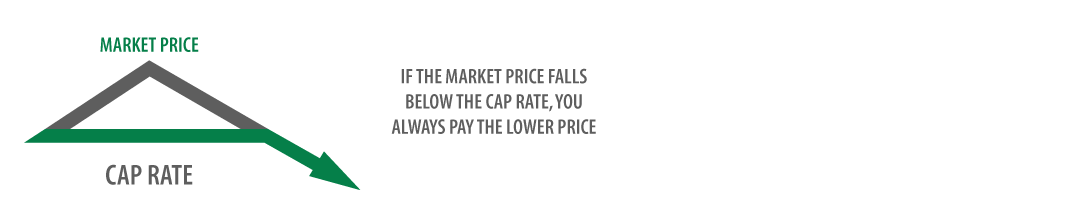Whitney Brothers Cap Price Plan
